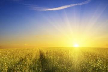 sunshine(feature)